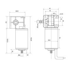 Motor de engrenagem sem-fim escovado Maintex 24V