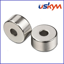 Aimants NdFeB d'anneau d'usine (R-004)