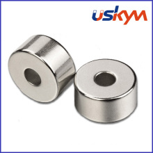 Factory Ring NdFeB Magnets (R-004)