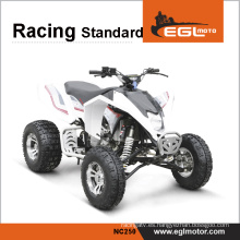 Gran potencia Quad Racing 250cc motos Atv