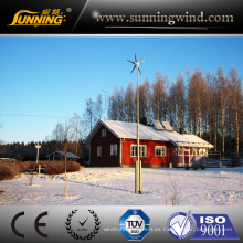Cinese Vento Wind Generator 300W (MINI 3)