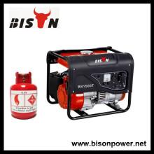 Haushalt Erdgas-Motor China 1kva 1kw 1kva Gas-Generator zum Verkauf