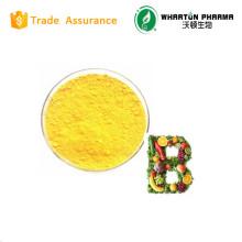 Made In China / chemische / Lebensmittelqualität Rohstoff / Vitamin B2 / Riboflavin, Vitamin B2