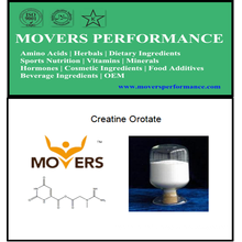 Nutrition sportive: Orotate de créatine avec numéro CAS: 768386-56-7