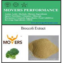Extrait de plantes biologiques naturelles Extrait de brocoli