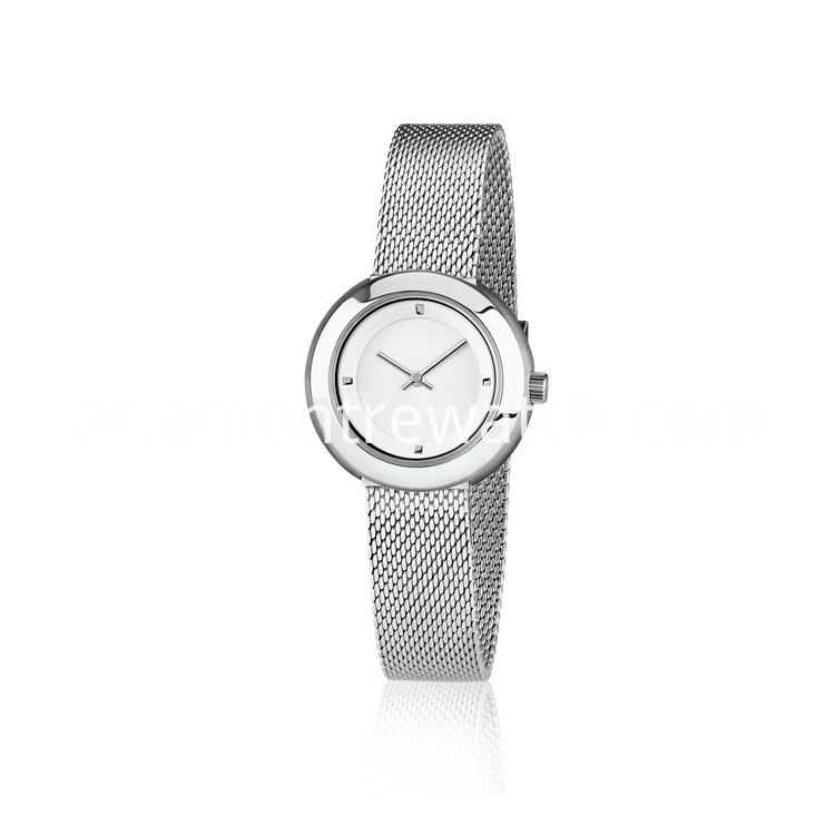Silver Watch Lady