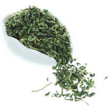 Здоровая Естественная Сушеные Белые Листья Шелковицы Чай