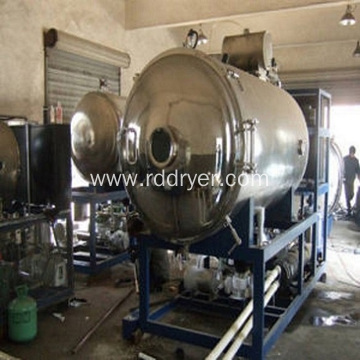 Vacuum Freeze Dryer/Freeze Dryer