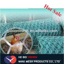 Proveedor caliente del alambre del pollo del acero inoxidable de la venta