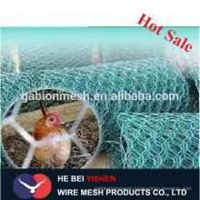 Hot sale stainless steel chicken wire China supplier