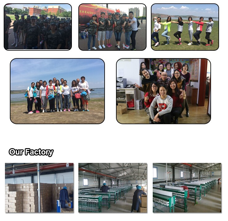 Aoyin Team