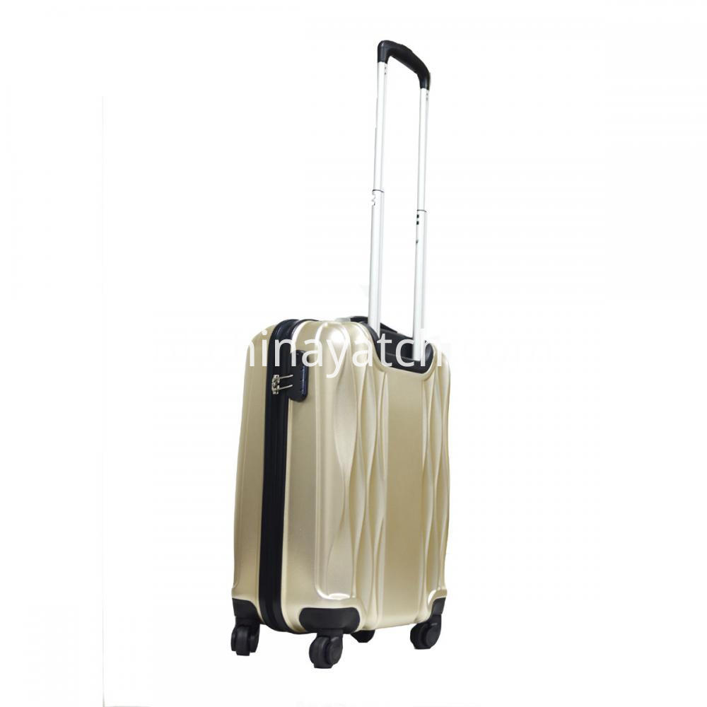 PET TROLLEY LUGGAGE