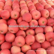 Fuji apple цена в Китае