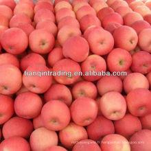 prix de la pomme fuji en Chine