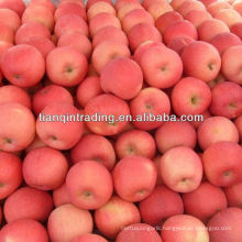 fuji apple price in china