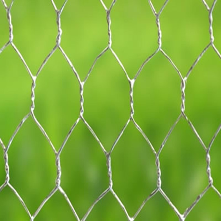 Grillage métallique Hexaganol Fence Great Price