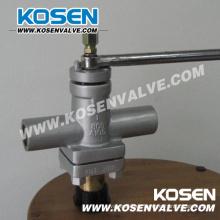 Válvula de enchufe acero forjado (X13)