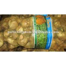 New Fresh Taro for Middle East market