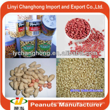 Canned roasted salted peanuts/blanched peanuts/china peanuts price in 2014