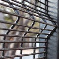 Welded Mesh Clear View Fence