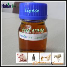 meistverkauftes Enzym / Lipase