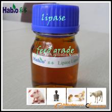 meilleure vente d'enzyme / lipase