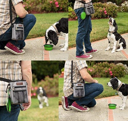 Lightweight Dog Treat Bag