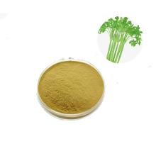 Free sample free sample celery extract powder celery juice powder