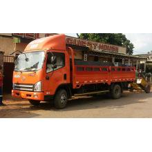 Faw 4X2 Mini Cargo Truck