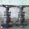 Forged Welded Bonnet Gate Valve