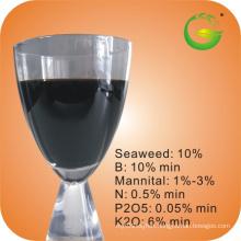 Liquid Seaweed Fertilizer with Trace Element-Boron