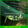 China Supply 100% HDPE olive harvest net/olive net for agriculture (32g-150g olive net )