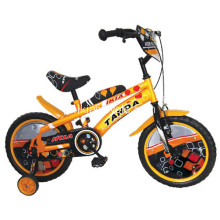 Fantasia Design BMX Kids Bike