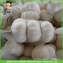 Sac en maille à l'ail blanc frais de haute qualité 5.0CM en carton Bon prix Jinxiang chinois