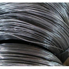Hard Drawn Nail Wires / Black Annealed Binding Wire / Cutting Wire