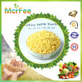 Water Soluble Fertilizer 100% NPK 19-19-19 Compound Fertilizer