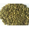 Noyau de graines de citrouille commun meilleures graines de citrouille certifiées chinoises