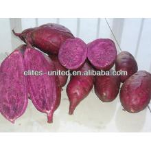 Purée de pommes de terre violet congelé