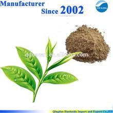 GMP certifié 100% naturel organique extrait de thé vert, thé polyphénol avec le meilleur prix
