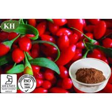 Barbury Wolfberry Fruit P. E / Extrait de Wolfberry / Goji Berry Extract CAS 107-43-7