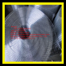 YW-- Security drywall mesh/welded wire mesh roll/Skype: randy.liang1