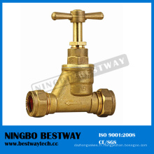 Robinet de robinet d'arrêt caché de haute performance (BW-S10)