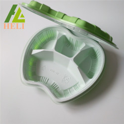 Clamshell Blister Plastic Bento Lunch Tray