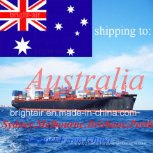 Logistics Provider Ocean Sea Freight Cargo Shipping Forwarder From China to Australia