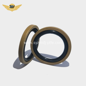 Diameter less than 20mm ptfe bronze Gsf seals