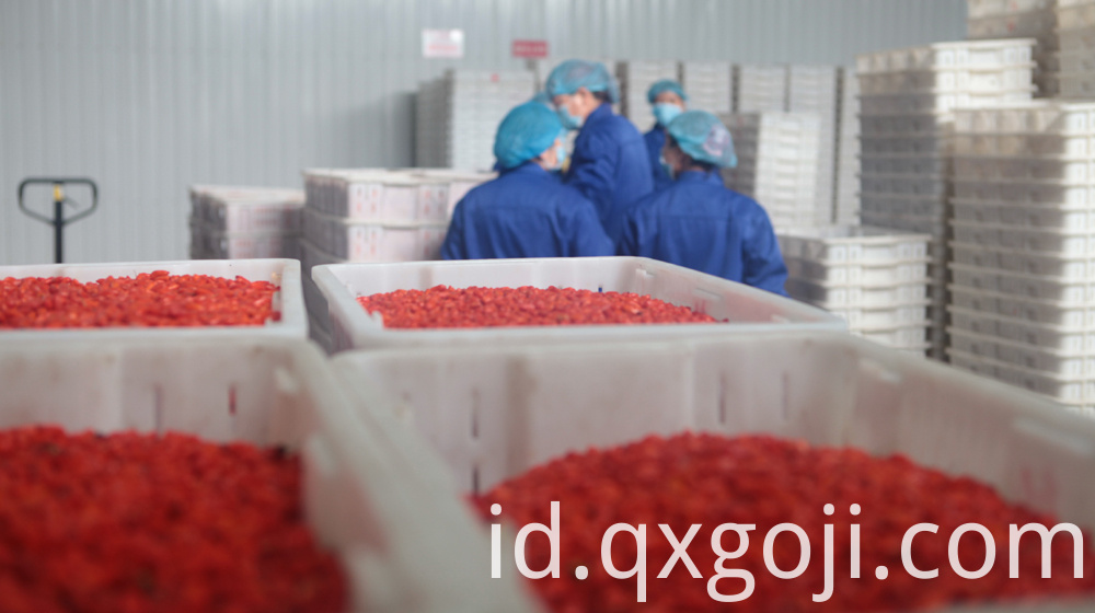 100% Organic Goji Berry Juice