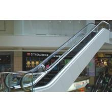 Residencial Econômico Indoor Tipos Vvvf Escada rolante por Huzhou Fabricante