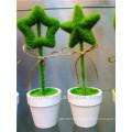 2014 yiwu hot sale cheap wedding bonsai tree