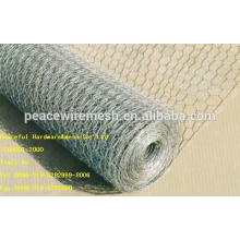Hot Selling Hot-Dipped /Galvanized Hexagonal Wire Mesh (W-LJW)