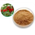 Nutrition organic goji berry freeze dried powder